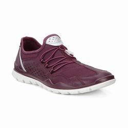 Womens ECCO Lynx Sneakers Shoes Burgundy Size ( US 4/4.5-12/12.5 ) 541YNAEU